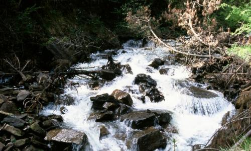Cascada de Aguasal