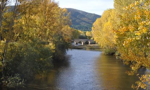 Puente medieval de Trespaderne