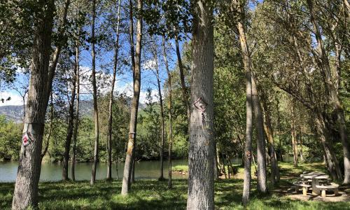 Zona de Baño en Condado de Valdivielso